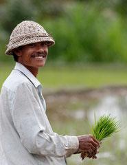 Portrait d'un riziculteur Balinais