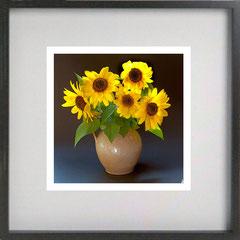 377 - Sonnenblumen 2