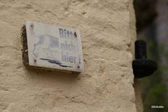 Wie bitte kommt ein Hund bis da hoch an die Mauer?