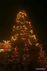 ... der Weihnachtsbaum!