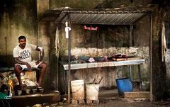 Fischverkäufer in Matara, Sri Lanka