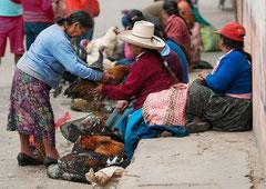 Hühnermarkt, Peru, Cajamarca