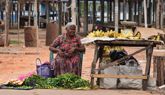Aluthgama, Marktfrau