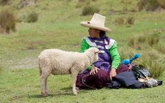 Cajamarca, Schäferin,