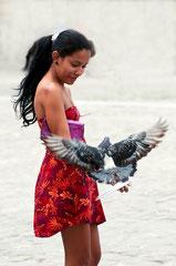 Tauben füttern Streetphotography