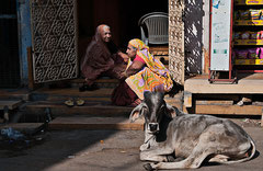 Indien, India, Jaisalmer, Rajasthan, Streetlife