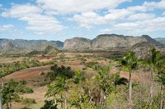 Valle de Viñales, Tabakanbau, Kuba