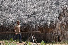 Plantagenbesitzer, Viñales, Cuba