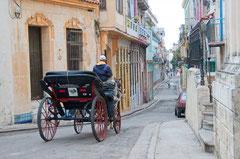 Pferdekutsche, Altstadt, Havanna Kuba