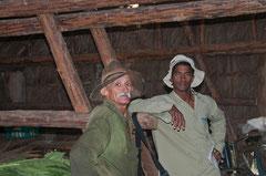 Arbeiter in einer Casa de Tabaco,