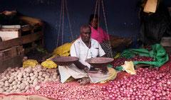 Auf dem Markt, Colombo