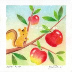 リスとりんご