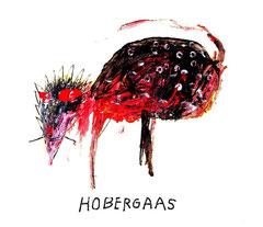 Hobergaas
