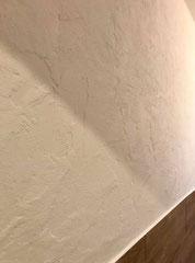 Wandbeschichtung mit Modellierputz...
