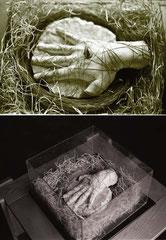 La mano dell'artista. Gesso, paglia, teca di vetro, bullone dorato. 1985. cm 50x50x30