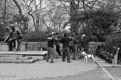 Taï Chi à Central Park