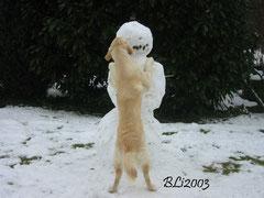 Heiße Küsse im Schnee