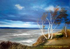 Birken im Wind  © Monika Rotzinger 2014