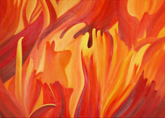 Flammender Mohn © Monika Rotzinger 2012
