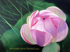 Lotusblüte © Monika Rotzinger 2013
