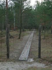 TUNNEL du STALAG de ZAGAN