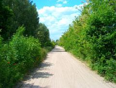 romantische Straße in Umgebung von Ruzsa