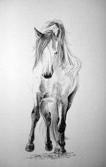 Horse Ballet (2012) nach Fotovorlage von Vikarus(http://vikarus.deviantart.com/art/Horse-ballet-259937345)
