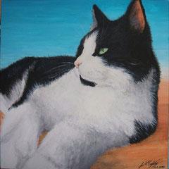 Joschi - Acryl ca. 20 x 20 cm (2009)
