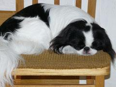 Спящий Кэдзин.