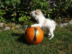 Юный футболист - Такичек.
