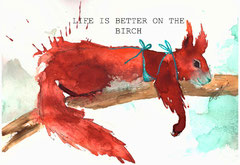 Life is better on the birch