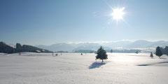 Winterliche Landschaft Egg bei Einsiedeln