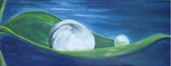 Wassertropfen im Mondlicht verkäuflich