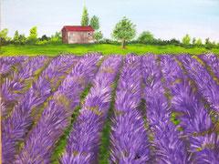 Provence vergeben