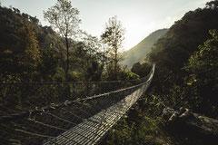 Kaule - Népal