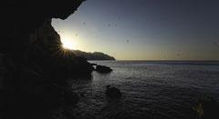 La silhouette - soleil levant sur l'Escu