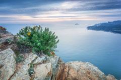 Vue depuis le Cap Canaille - Cassis