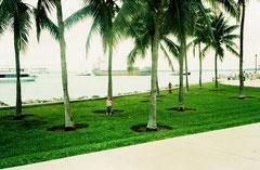 DiVa en Miami 2009