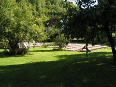 safranière 2013 parcelle n° 2