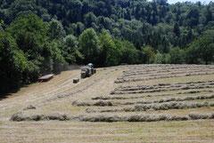 location chalet Haute-Savoie © www.berceau-savoyard.fr
