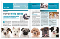 Magazine | Animal's Health – doppia pagina interna | cliente: ABC Editoriale