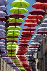 Caroline : Parapluies en fête 2