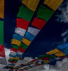 Francis : Tibet