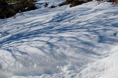 Bernard : Neige au col d'Arès