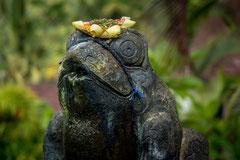 Fancis : Bali 2