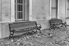 Caroline : Les bancs des sénateurs désertés