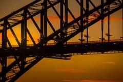 Francis : Sydney