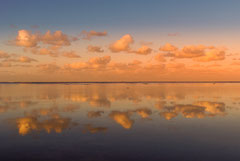 Franncis : Nouvelle Calédonie