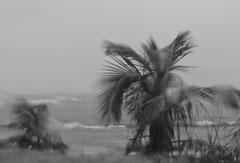 Monique : Pluie aux Antilles