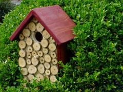 Houten Nestkastje, Nestkastje met hout bruin en groen, Details, Vogelhuisje bouwen ,  vogelhuisje met hout bruin en groen_1
